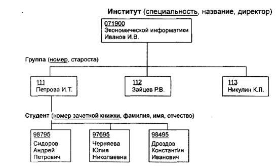 примере сетевой структуры,